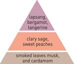 pyramid scheme lapsang tea